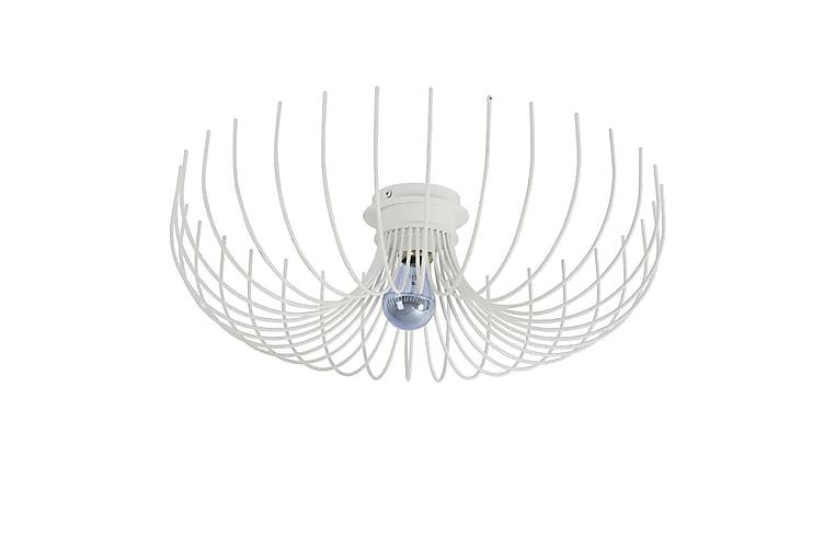 Homemania Taklampe - Homemania - Belysning - Innendørsbelysning & Lamper - Taklampe