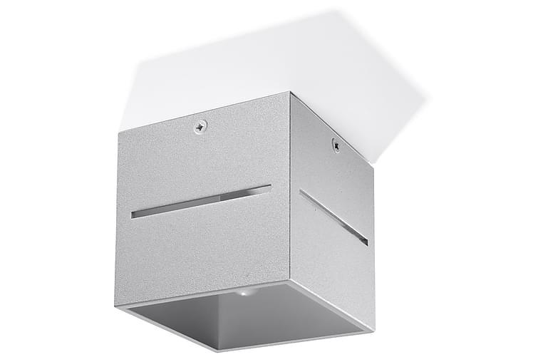 Lobo Plafond 10 cm Grå - Sollux Lighting - Belysning - Innendørsbelysning & Lamper - Taklampe