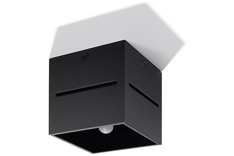 Lobo Plafond 10 cm Svart - Sollux Lighting - Belysning - Innendørsbelysning & Lamper - Taklampe