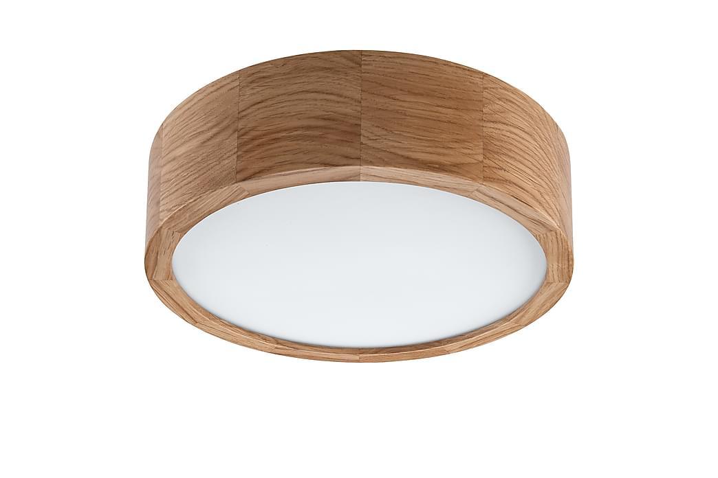 Rafaelle Plafond - Eik - Belysning - Innendørsbelysning & Lamper - Taklampe