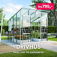 Drivhus