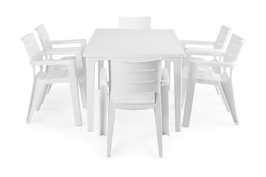 Futura Spisegruppe 165+6 Ibiza Stablestoler