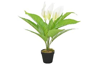 Kunstig plante flamingoblomst med potte hvit 55 cm