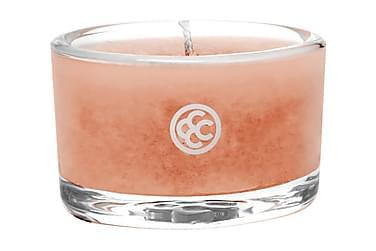 Duftlys Glass Tealight Tropical Nectar