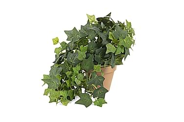 Aline Kunstig plante
