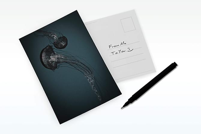 Carma Nature Jellyfish, Dark - Kort 15x21cm - Innredning - Veggdekorasjon - Bilder & kunst