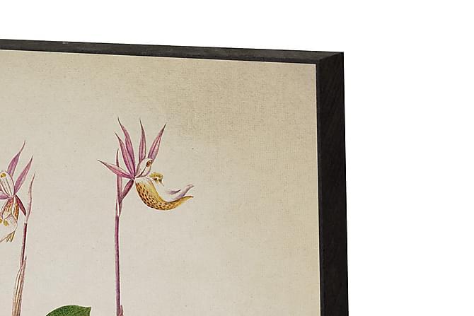 Flora Danica Flora Danica 14 - Innredningsblokk 21x15x2cm - Innredning - Veggdekorasjon - Bilder & kunst