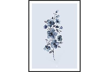 Floral Blue Bilde