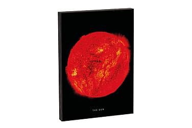NASA The Sun
