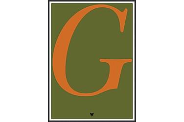 Type-G Bilde