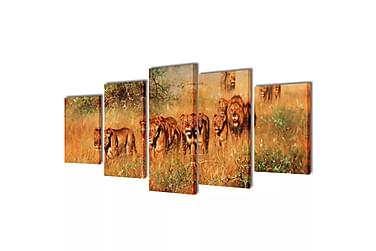 Kanvas Flerdelt Veggdekorasjon Løver 100x50 cm