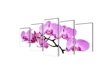 Kanvas Flerdelt Veggdekorasjon Orkidé 100x50 cm