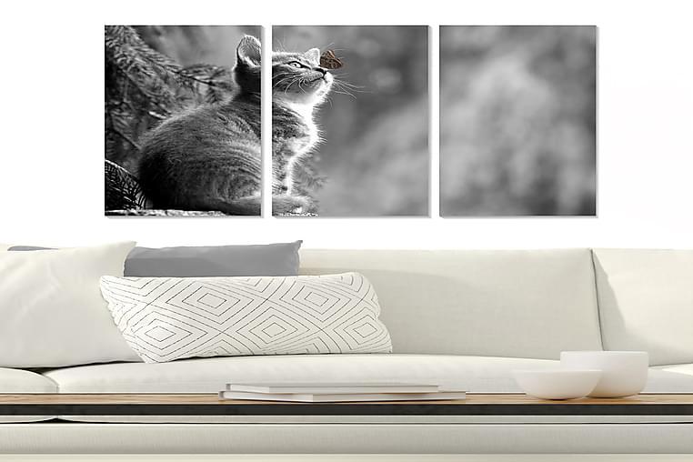 Bilde Animal 3-pk Flerfarget - 22x05 cm - Innredning - Veggdekorasjon - Posters