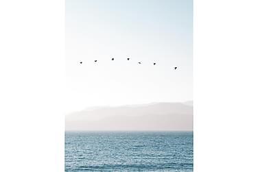 Pastel Blue Sea Poster