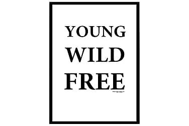 Poster Young Wild Free